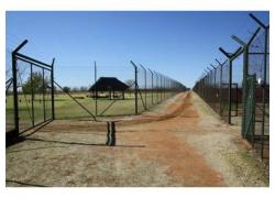 Stunning Lion Farm for sale