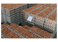 Fresh Tables White/Brown Eggs