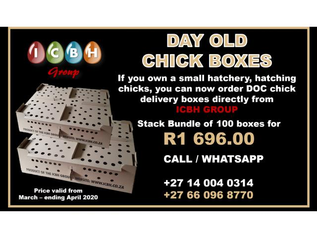 Day Old Chick Boxes