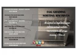 Egg Grading Machines