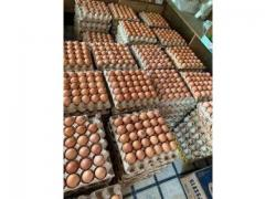 brown xlarge eggs specials