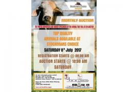 Stockmans Choice Auction