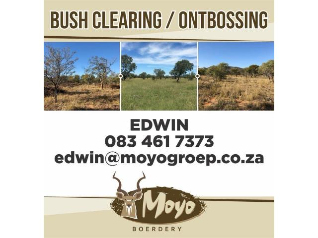 Bush Clearing Services