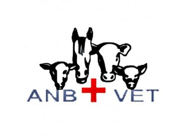 ANB Veterinary Wholesalers