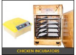 Pleysier Incubators