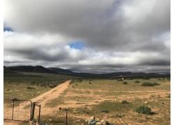 Sheep farm in Namakwaland